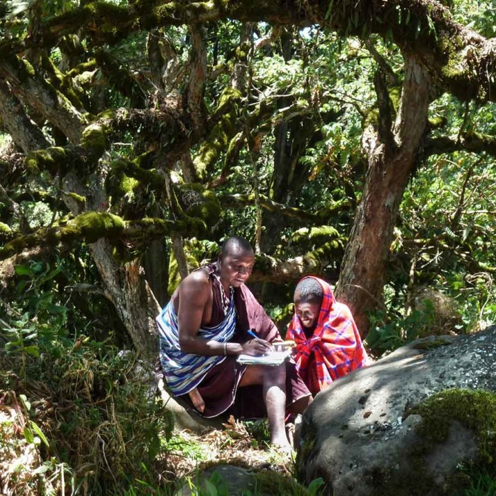 Koley teaching Lazaro (who was just hired) how to fill in the lion observation form. Lemakarut mountain.