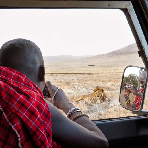 Conservation Officer Roimen photographing Gene pool male in the Ngorongoro Crater.
