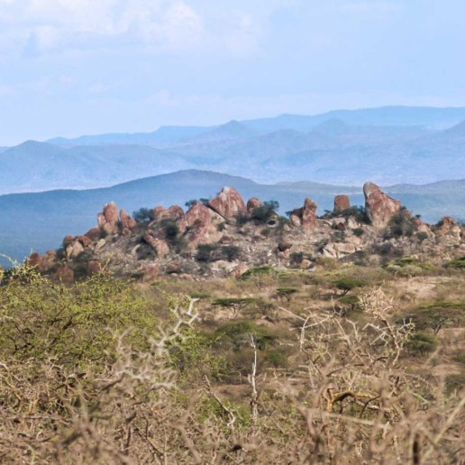 A less visited part of Ngorongoro is the rugged terrain along the Lake Eyasi escarpment with its scenic rocky outcrops and knobbly Commiphora trees.
