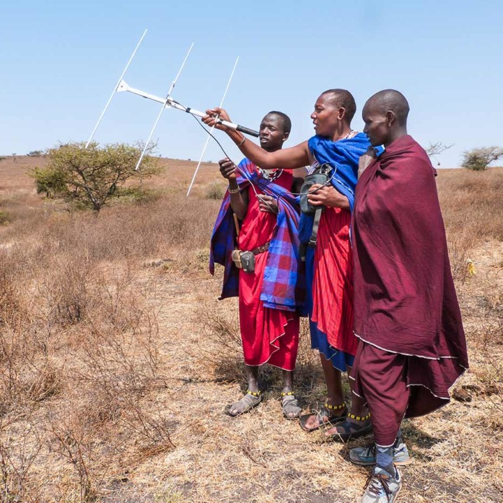 KopeLion scouts tracking lions in Ngarusi valley.