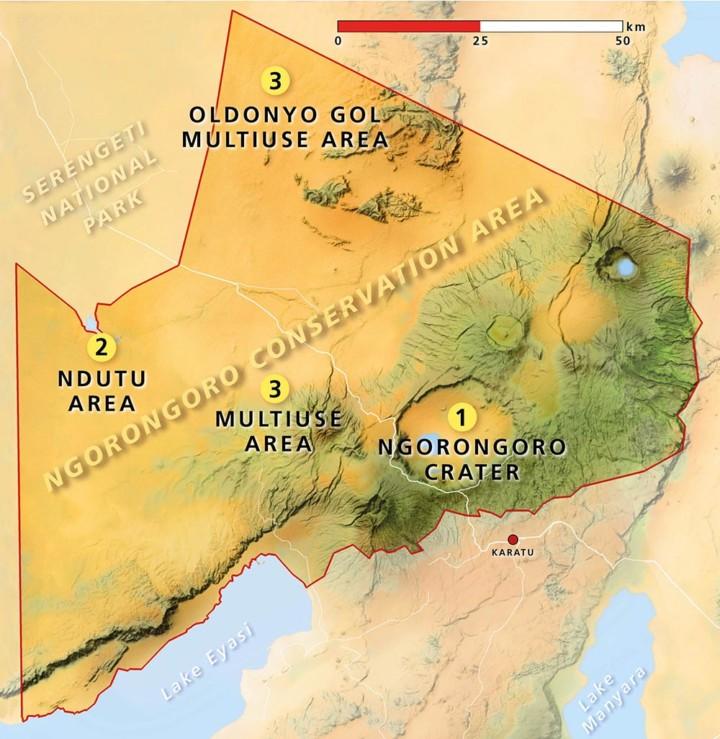 KopeLion study area Ngorongoro Conservation Area